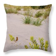 Assateague Dunes 2 Throw Pillow