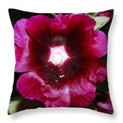 Assorted Flower 004 Throw Pillow
