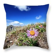Aster Alpinus Throw Pillow