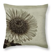 Aster With Textures Throw Pillow