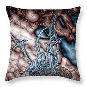 Asteroid Throw Pillow