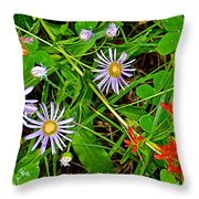 Asters And Scarlet Paintbrush On Swan Lake Trail In Grand Teton National Park-wyoming  Throw Pillow