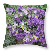 Asters Light And Dark Throw Pillow