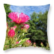 Asters Throw Pillow