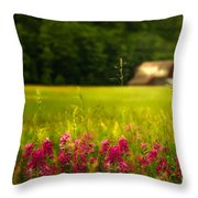 At A Distance Throw Pillow