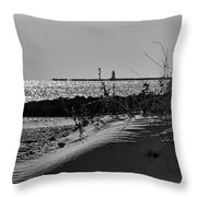 At Black Point Throw Pillow