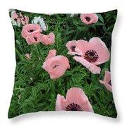 At Bridge Of Flowers  --  Massachusetts  Throw Pillow