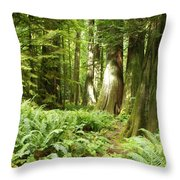 At Cathedral Grove Throw Pillow