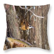 At Home In The Cedars Throw Pillow