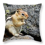 At Home In The Lava Beds Throw Pillow
