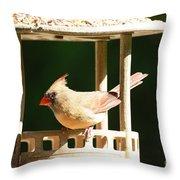 At My Birdfeeder Throw Pillow