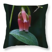 At Orchid Show Throw Pillow