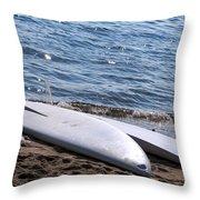 At Rest Throw Pillow