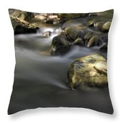 At The Banias River 2 Throw Pillow