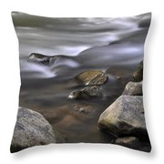 At The Banias River 3 Throw Pillow