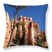 At The Bottom Of The Bryce Np Throw Pillow