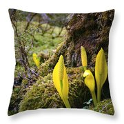At The Bottom Of The Forest Throw Pillow