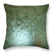 At The Car Wash 11 Throw Pillow