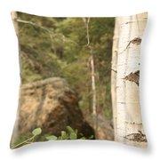 At The Continental Divide Throw Pillow