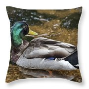 At The Duck Pond V5 Throw Pillow