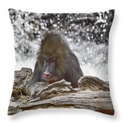 At The Edge Of The Waterfall Throw Pillow