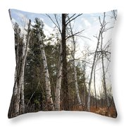 At The Edge Of The Wetland Throw Pillow