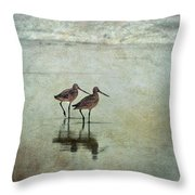 At The End Of A Day Throw Pillow