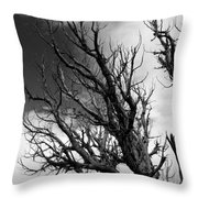 At The End Of Time Throw Pillow