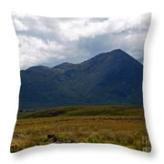 At The Foot Of The Mountain Throw Pillow