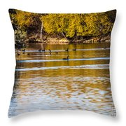 At The Lake-34 Throw Pillow
