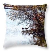At The Lake-40 Throw Pillow