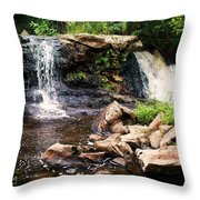 At The Mill Pond Dam Throw Pillow