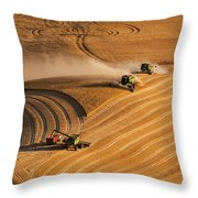 At The Point 2 Throw Pillow