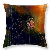 At The Spider Net Throw Pillow