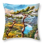 At The Top Of The Mountain Throw Pillow