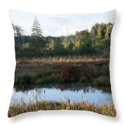 At The Wetlands Throw Pillow