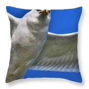 At Your Disposal The Waiting Gull Throw Pillow