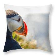 Atalantic Sea Puffin In Close Up Throw Pillow