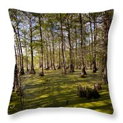 Atchafalaya Swamp   #6913 Throw Pillow