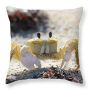 Atlantic Ghost Crab 2760 Throw Pillow