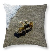 Atlantic Ghost Crab Throw Pillow