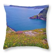 Atlantic Ocean From Signal Hill National Historic Site In Saint John's-nl Throw Pillow