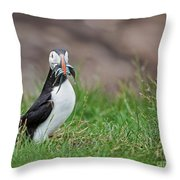 Atlantic Puffin With Sandeels Throw Pillow