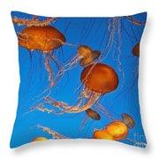 Atlantic Sea Nettle Jellyfish Throw Pillow