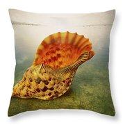 Atlantic Trumpet Triton Shell Throw Pillow