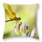 Atop The Hostas Throw Pillow