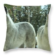 Attention Grabber Throw Pillow