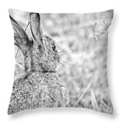 Attentive Hare Throw Pillow