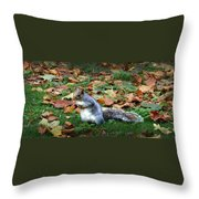 Attentive Squirrel Throw Pillow
