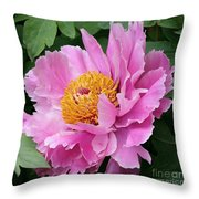 Attractive Pink Peony Throw Pillow